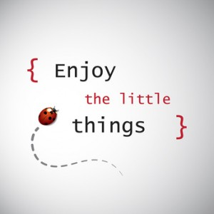 "Inspirational Quote. ""Enjoy the Little Things"" On a Grey Background With a Ladybird"
